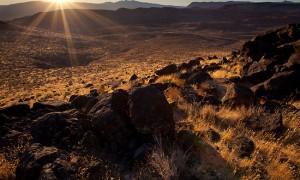 dawn desert