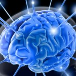 Intermittent Fasting Promotes Brain Health