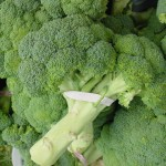 The Anti-Cancer Medicine in Broccoli (DIM Nutrients)