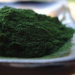 Chlorella 101: What You Need to Know About This Nourishing Superfood