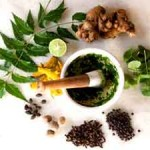 12 Sacred Herbs to Boost Your Energy, Vitality and Adaptability