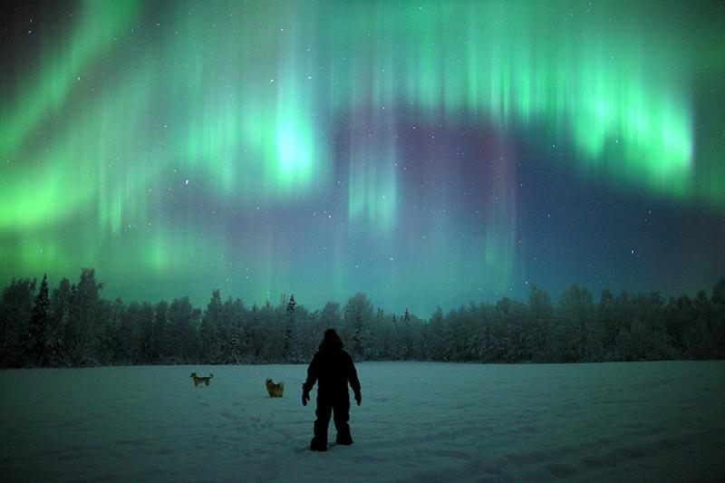 aurora lappland