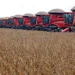 Russia Bans GMO Corn Imports; EU May Follow Suit
