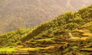 bhutan-organic-farming-small-300