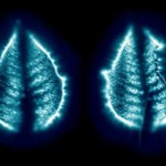 How to Develop the Ability To See and Read the Aura – Part 2