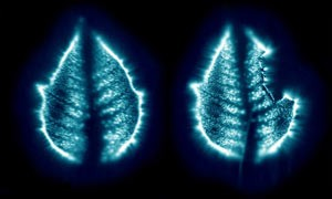 leaf-energy-aura-nature-mind-psychedelic-small-300