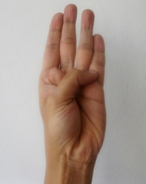 taoist hand gesture 1
