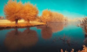 dreamscape-lush-river-nature-small-300