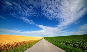 field-nature-road-sky-clouds-expansive-beauty-small-300