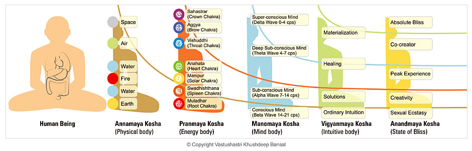 five koshas diagram