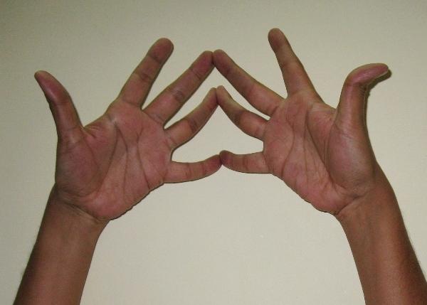 hand gesture mudra