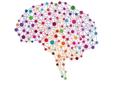 brain-hemisphere-balance-gamma wave