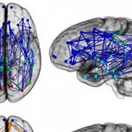 9 Fascinating Neuroscience Studies that Reveal the Inner Workings of Your Mind