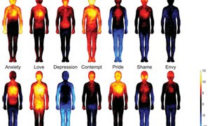 emotions-in-the-body-map-small-300