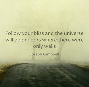 Follow-your-bliss-and