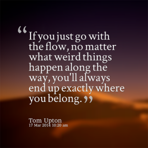 tom upton go with the flow copy fb 400