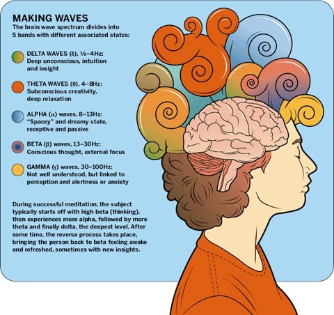 brainwave 1