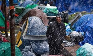 occupy snow winter