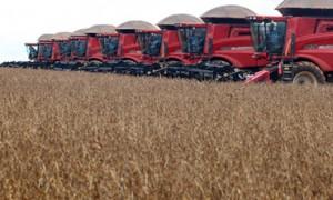 gmo monsanto agribusiness