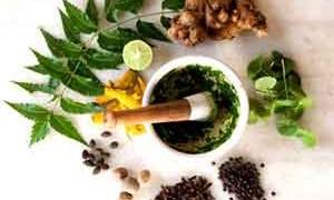 ayurvedic-herbs-small-300