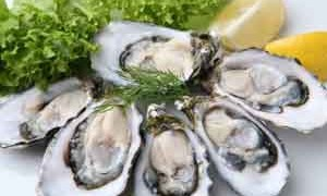 oysters-zinc-small