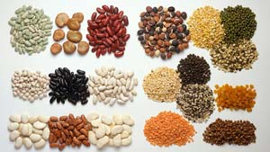 protein-beans-lentils-small-300