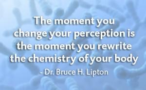 bruce lipton genetics fb 400